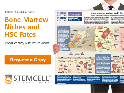 Request your copy of Bone Marrow Niches and HSC Fates developed by Nature Reviews Immunology and Nature Reviews Molecular Cell Biology