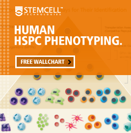 Request a free wallchart featuring HSPC subset surface markers, frequencies in cord blood and assays for their analysis