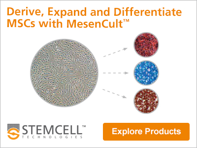Learn more about media and reagents to derive, expand and differentiate mesenchymal stem cells (MSCs).